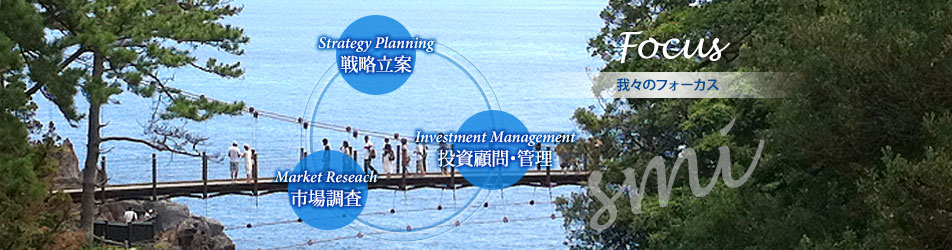 我々のフォーカス:戦略立案(Strategy Planning)、市場調査(Market Reseach)、投資顧問・管理(Investment Management)