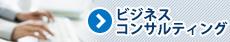 中国市場調査